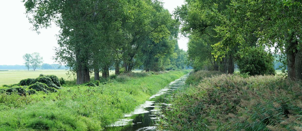 Nuthe-Kanal zwischen Großbeeren und Diedersdorf